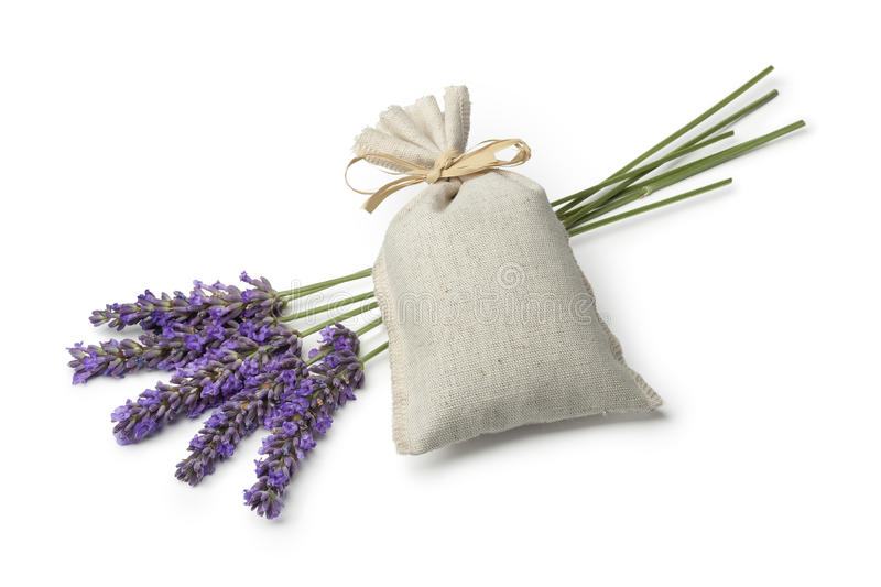 Sack with dried lavender flowers. Linen sack with dried lavender flowers and fresh lavender on white background royalty free stock photography