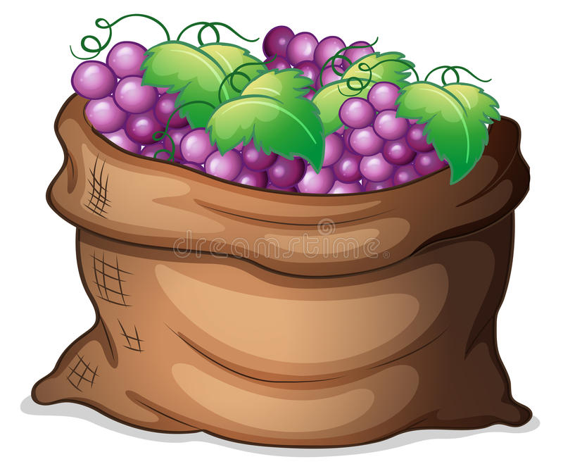 A sack of grapes vector illustration
