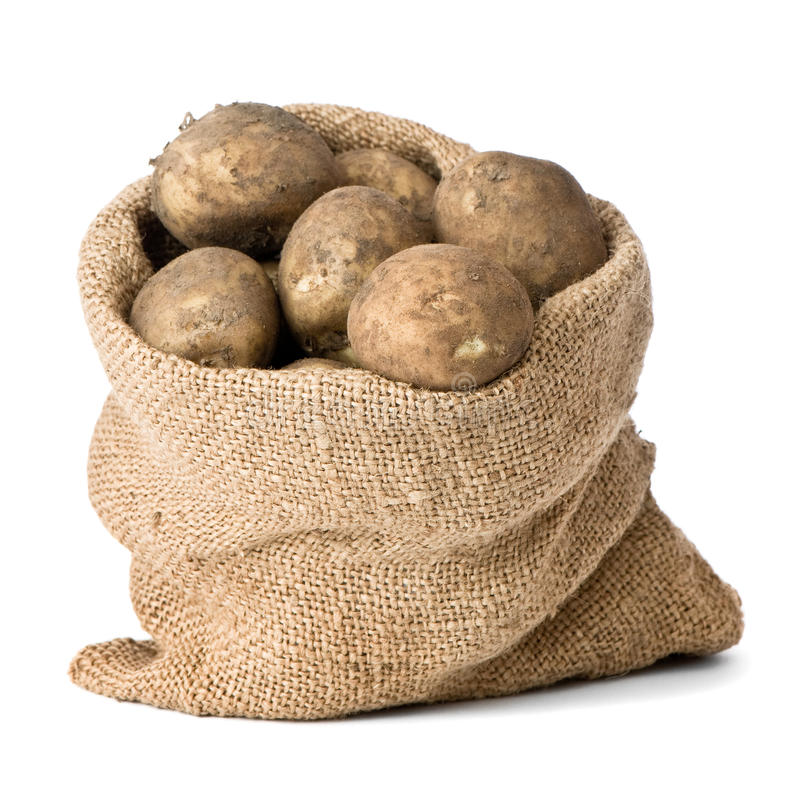 Sack Of Potatoes. Burlap sack of freshly dug new potatoes on white background stock images