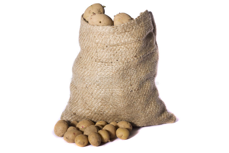 Sack of potatoes. View of a sack of potatoes isolated on a white background royalty free stock image