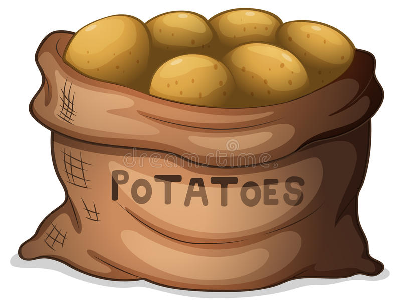 A sack of potatoes. Illustration of a sack of potatoes on a white background royalty free illustration