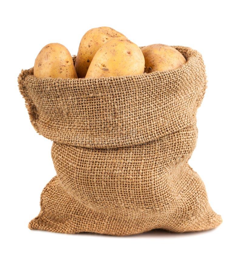 Sack of potatoes. Sack of raw potatoes on white background stock image