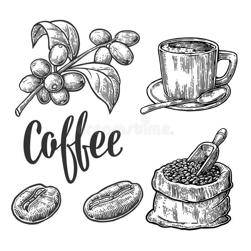 Free Sack With Coffee Beans With Wooden Scoop And Beans Royalty Free Stock Photography - 70981517