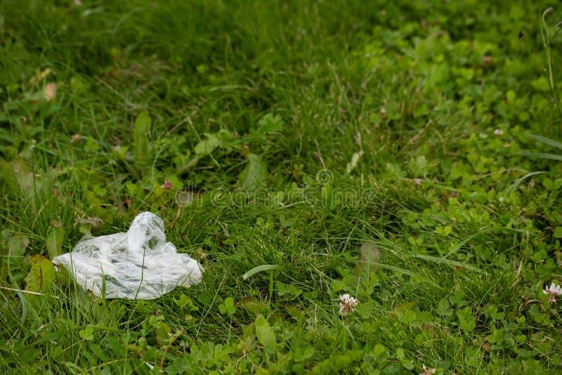 Saco branco jogado na grama verde fotos de stock