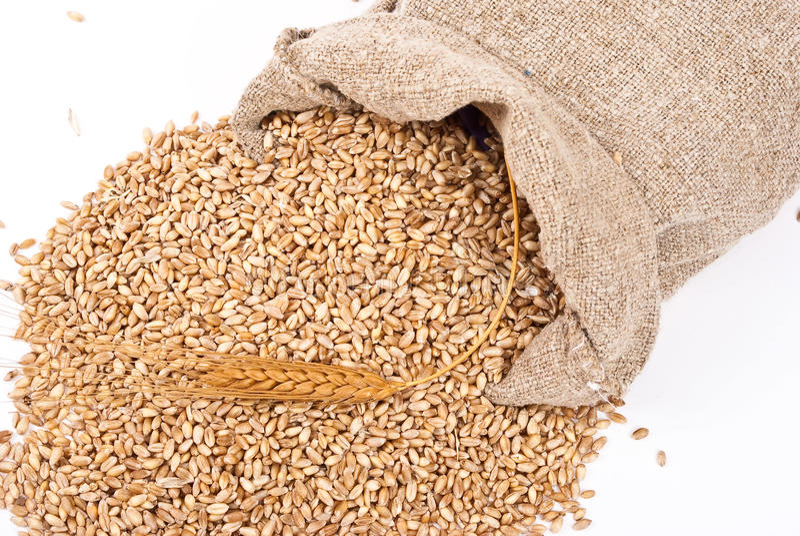 Saco com trigo imagens de stock royalty free