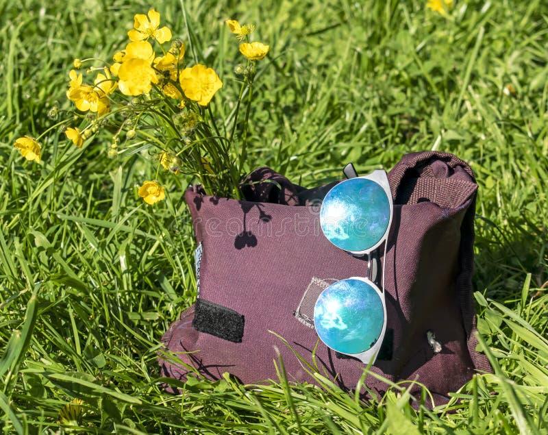 Saco com um ramalhete de suportes das flores e dos óculos de sol no close-up da grama fotos de stock royalty free