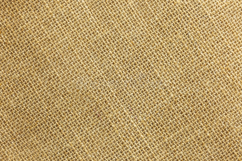 Saco de Brown Remie imagem de stock