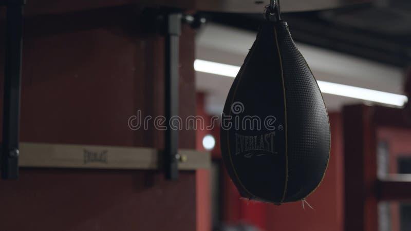 Saco de perfuração de couro preto pequeno para um treinamento do pugilista que pendura do teto no gym Metragem conservada em esto imagens de stock