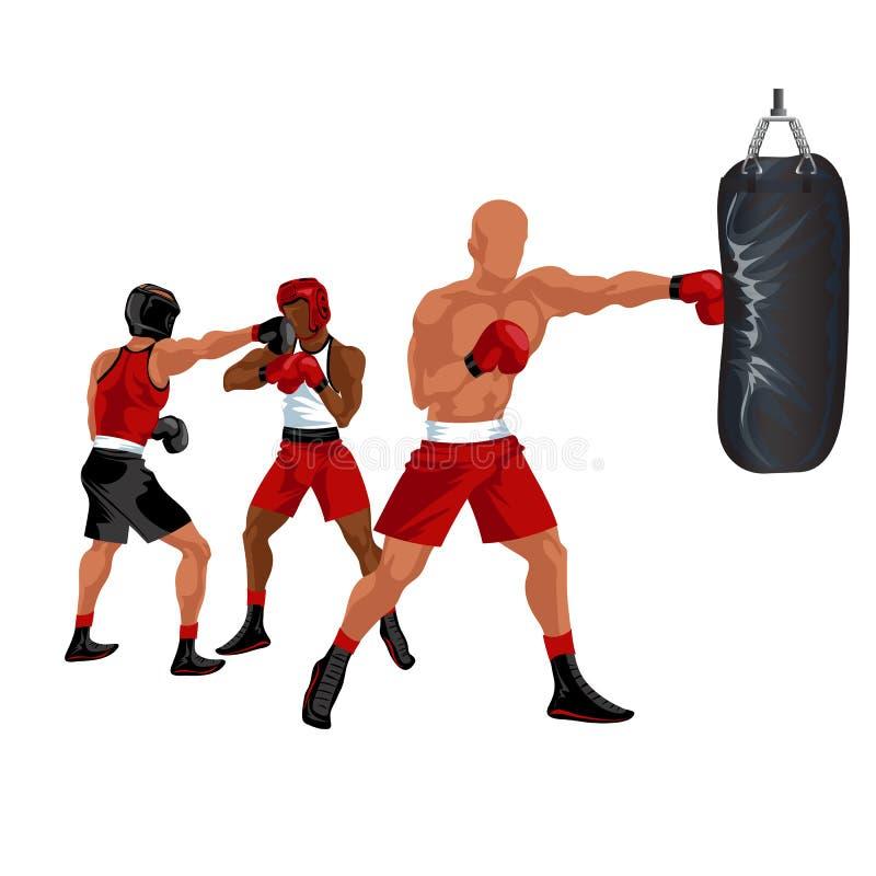 Saco de perfuração do encaixotamento do desportista O pugilista profissional no short vermelho e as luvas que batem o saco de are ilustração royalty free