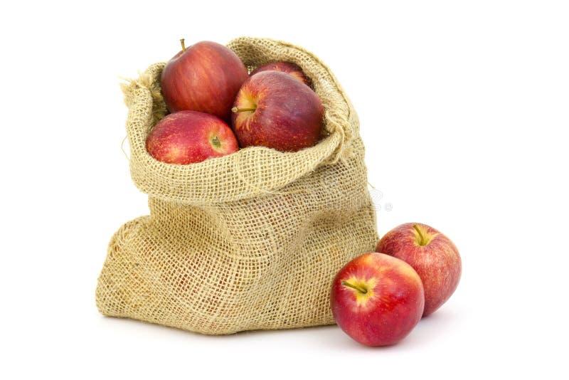 Saco de serapilheira com maçãs imagem de stock