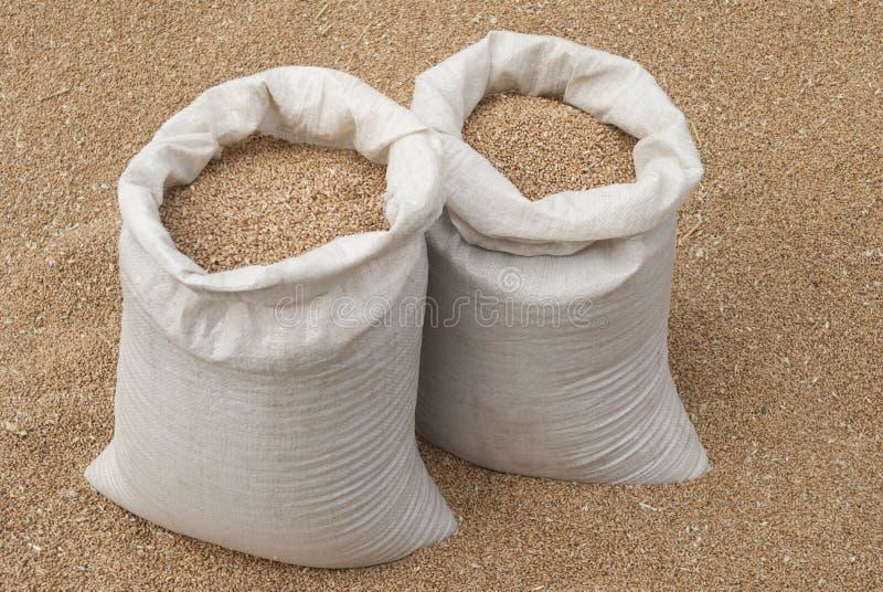 Saco do trigo. imagem de stock royalty free