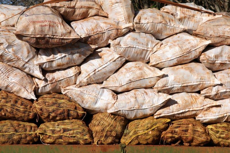 Sacos da mandioca imagem de stock