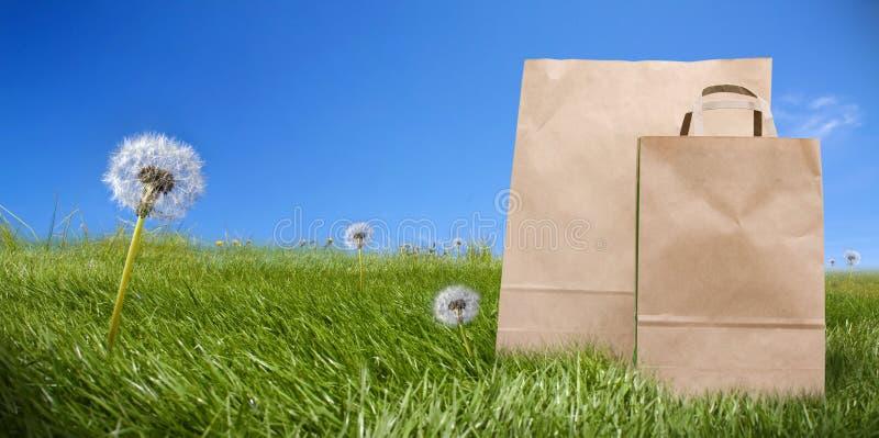Sacos de papel do supermercado na grama verde foto de stock royalty free