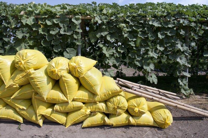 Sacos do fertilizante orgânico no jardim fotografia de stock