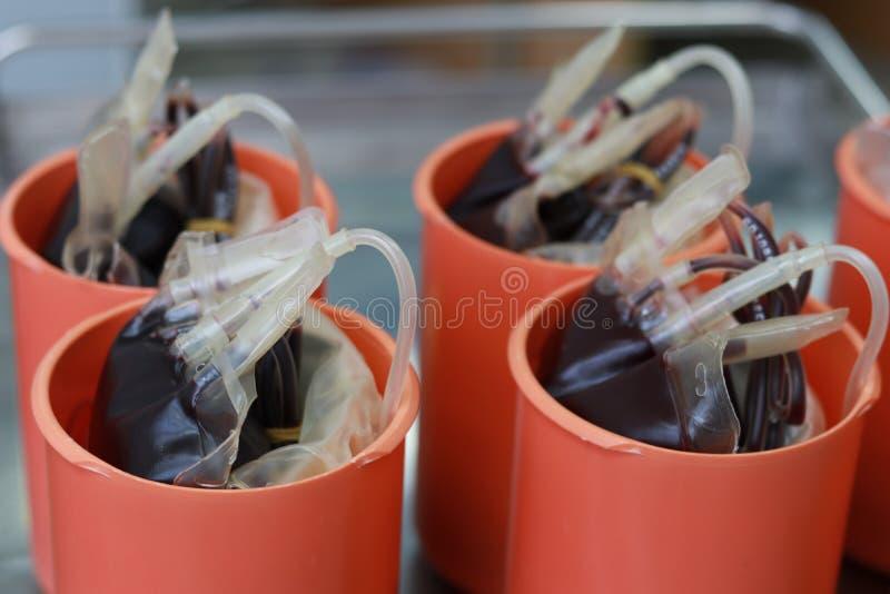 Sacos do sangue inteiro foto de stock