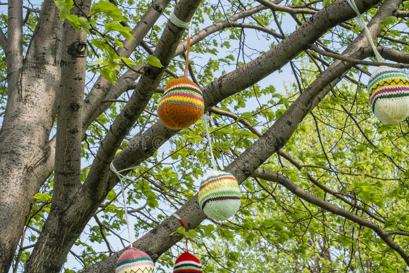 Sacos feitos malha lãs em uma árvore imagens de stock