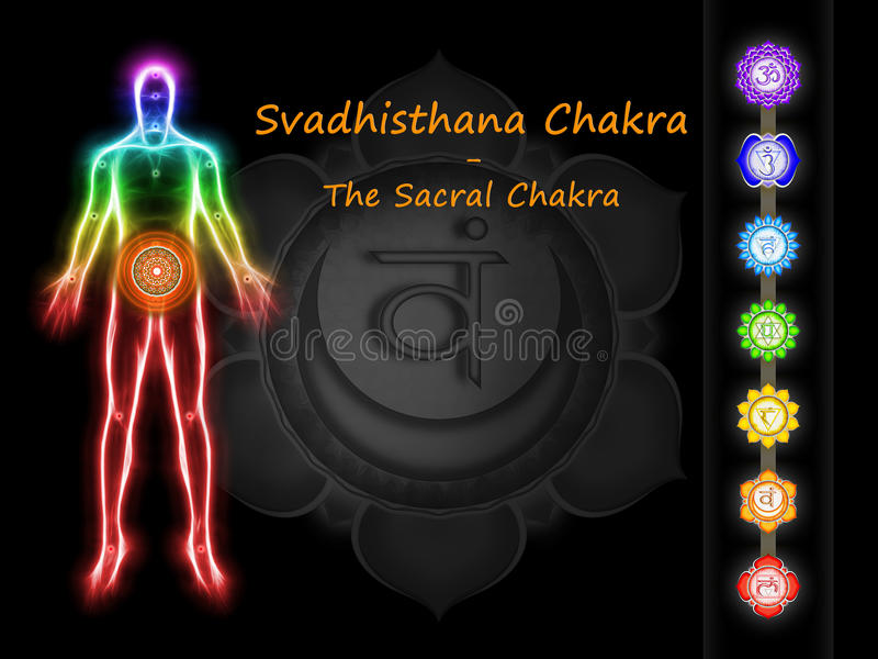 The Sacral Chakra. Illustration of the sacral chakra royalty free illustration