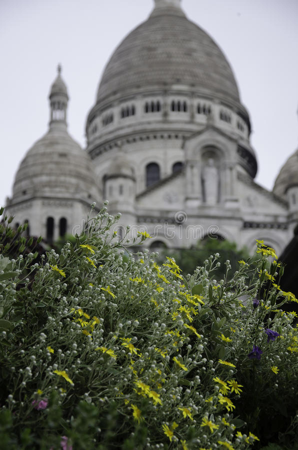 Sacre Coeur, Montmarte, Париж blossomed цветок стоковые изображения