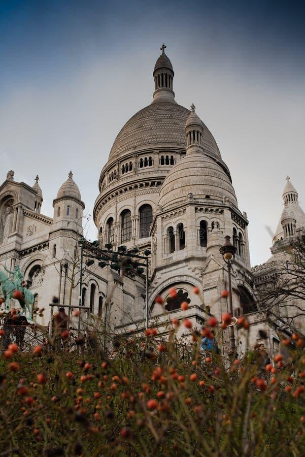 Sacre-Coeur przez krzaków zdjęcia stock