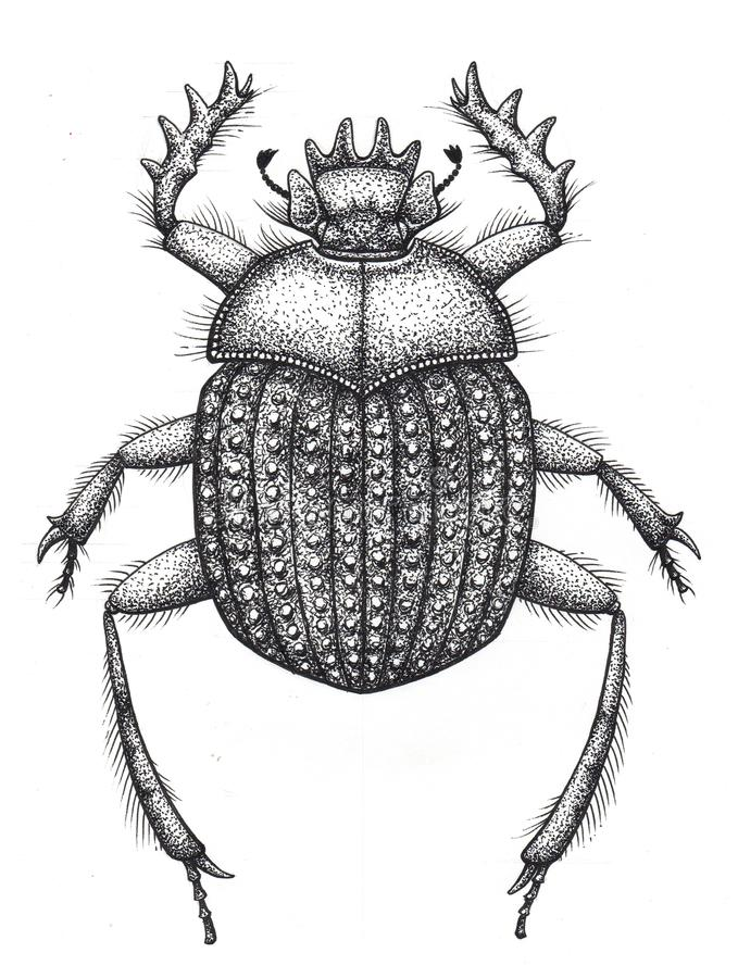 Sacred Beetle Of Scarabs Tattoo Art Dot Work Tattoo Insect Symbol