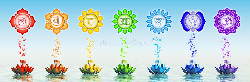 Sacred Chakra Lotus vector illustration
