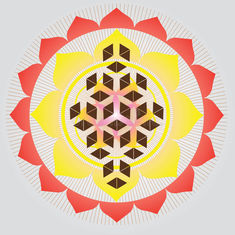Sacred geometry-Flower of life seed stock illustration