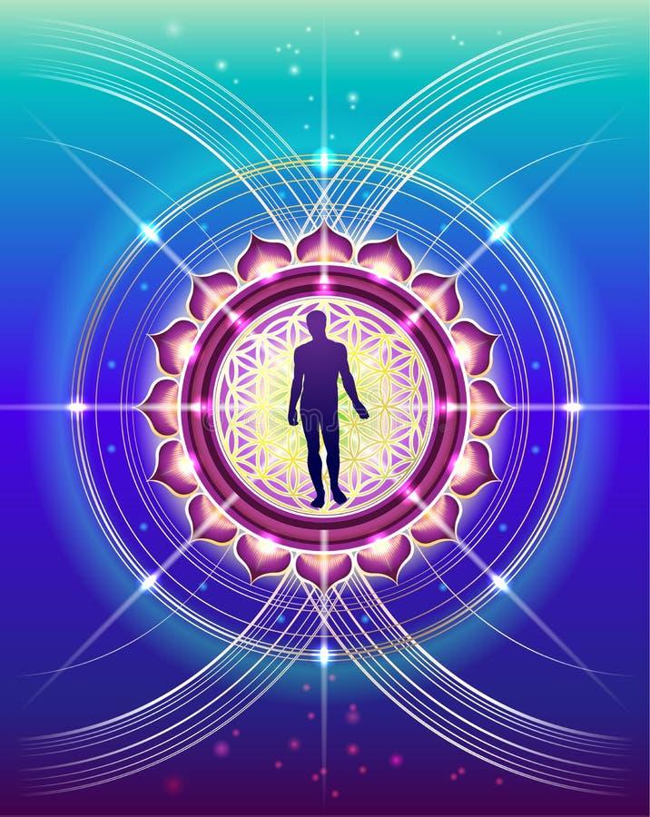 Sacred Geometry of human life royalty free illustration