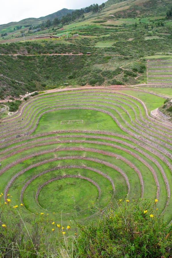 Sacred valley, Moray, Cusco, Peru, 02/07/2019. Moray, sacred valley, region of Cusco, Peru royalty free stock photos