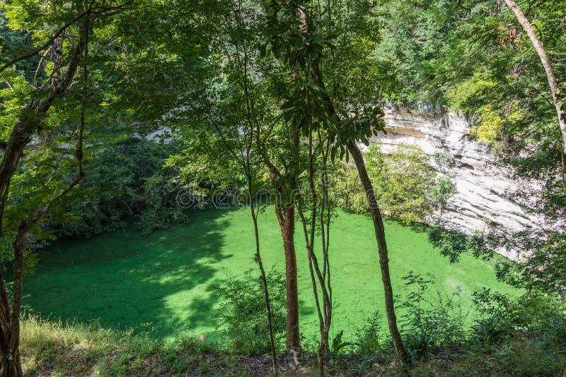 Sacrifice cenote at chichen itza ruins mayan culture Chichen itza mexico natural swimming pool