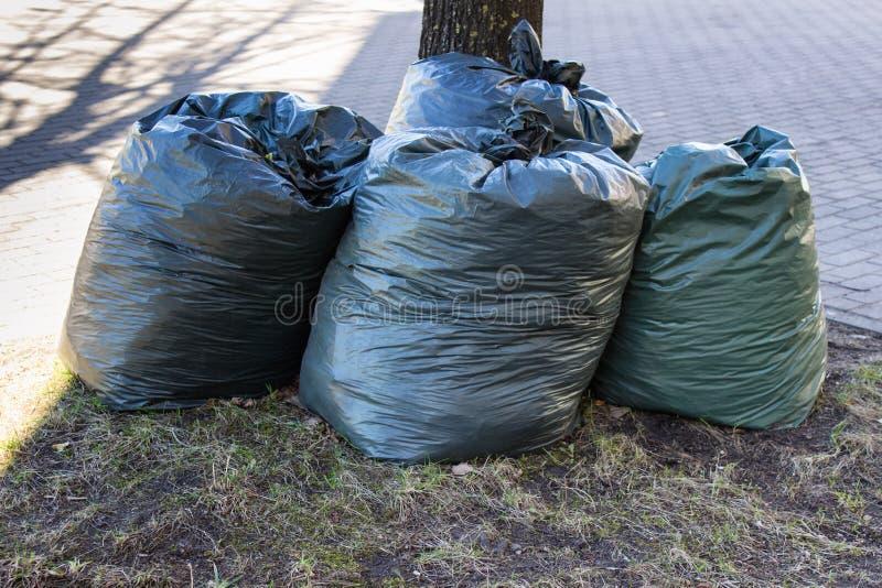 Sacs de déchets remplis photo libre de droits