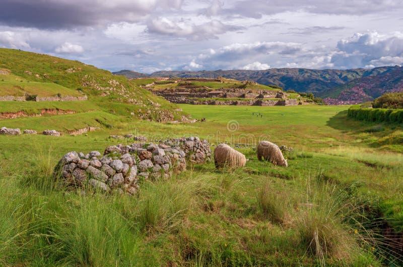 Sacsayhuaman, ruínas do Inca em Cusco, Peru fotos de stock royalty free