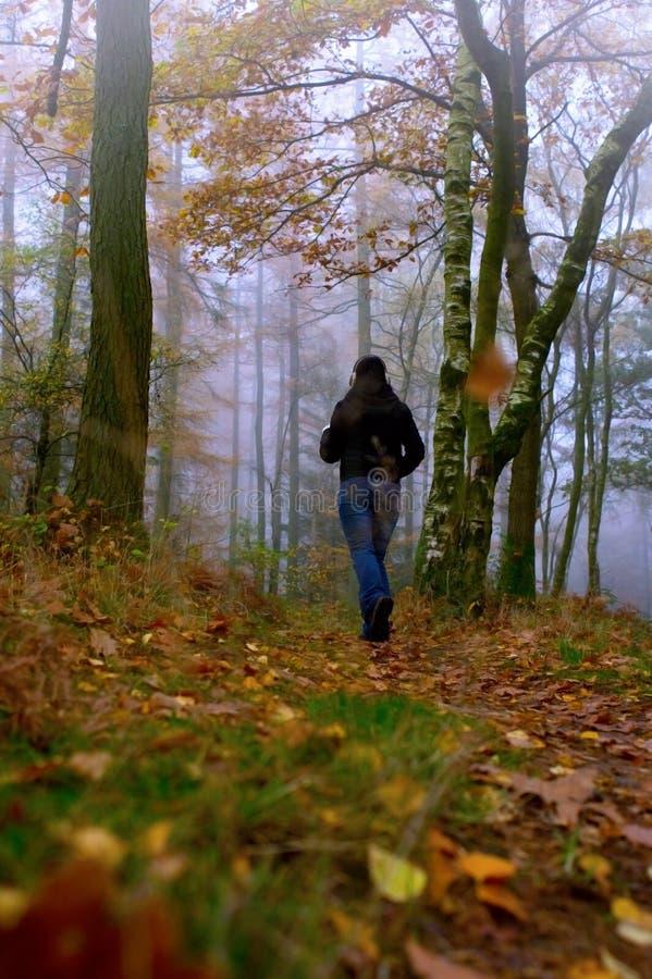 Sacudida del otoño fotos de archivo libres de regalías