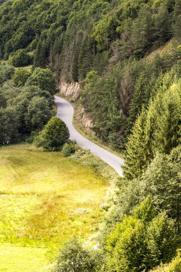 Sacuieu, Landschaft, Natur, Berge, Rumänien stockbilder