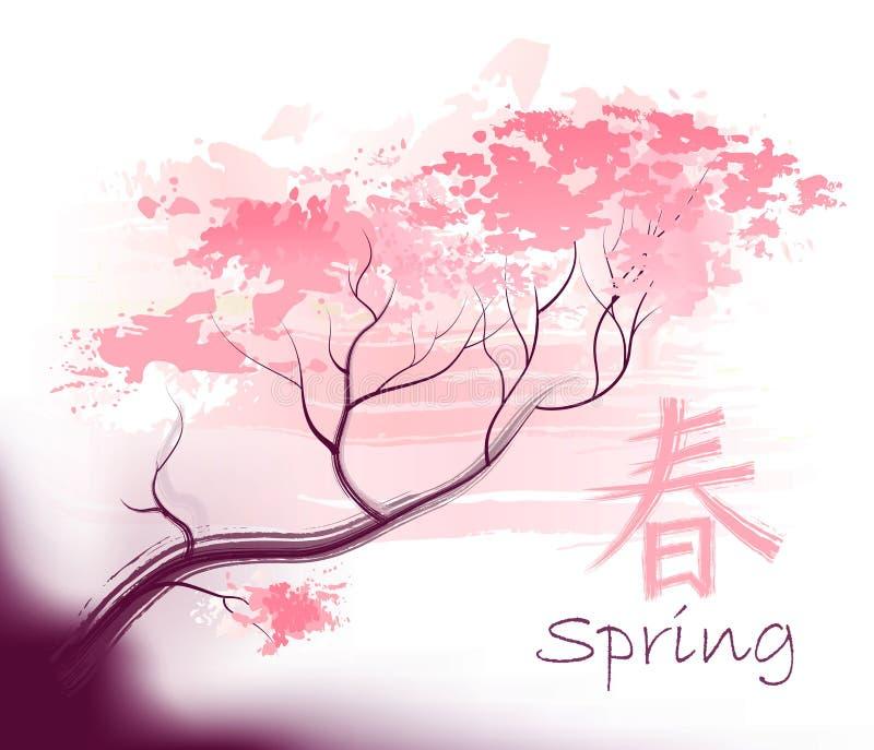 sacura piękna wiosna ilustracja wektor