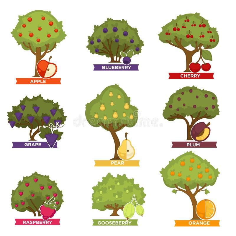 Sadów krzaki z dojrzałymi owoc z imionami i drzewa ilustracji