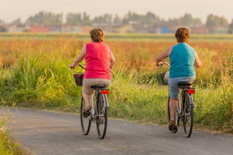 Sadło dolne kobiety iść jeździć na rowerze zdjęcia royalty free