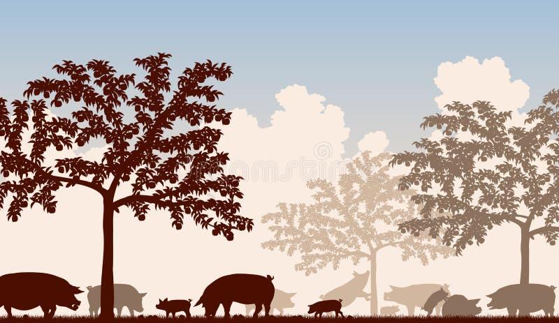 Sad świnie ilustracja wektor