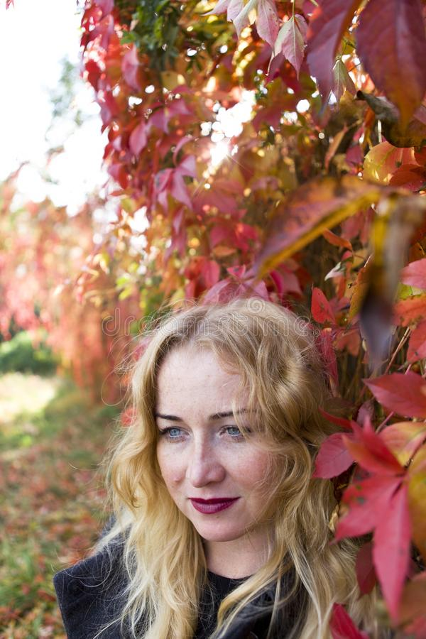 Portrait of blond near leaves royalty free stock photo