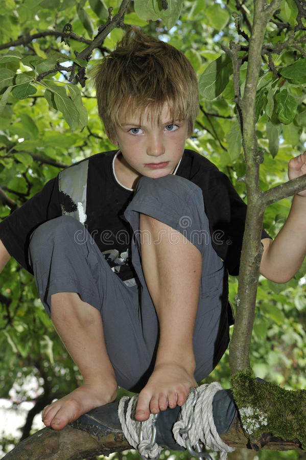 Sad Boy Playing on a Tree.  stock images