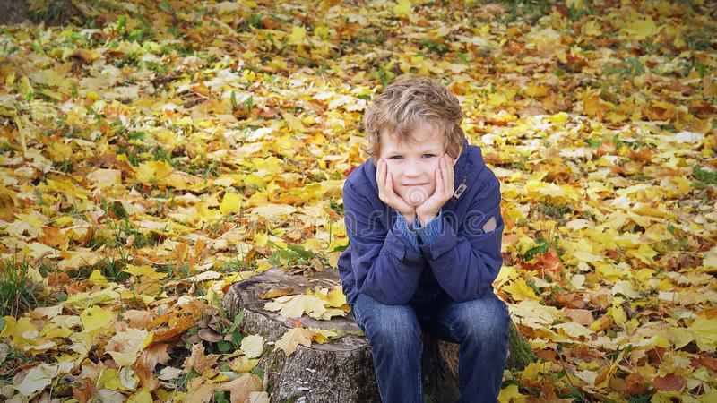 Sad boy sits propping his cheeks with his hands on the stump in autumn park, outdoors. Sad boy sits propping his cheeks with his hands on the stump in autumn royalty free stock photography
