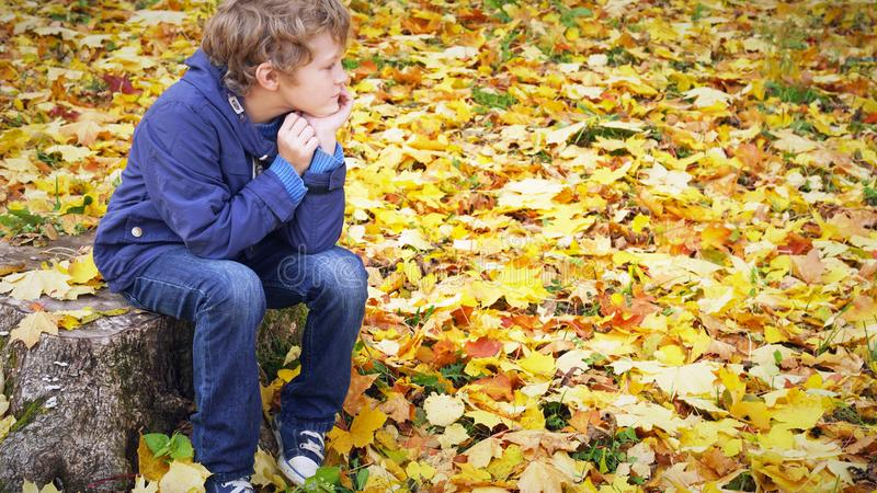 Sad boy sits propping his cheeks with his hands on the stump in autumn park, outdoors. Sad boy sits propping his cheeks with his hands on the stump in autumn stock images