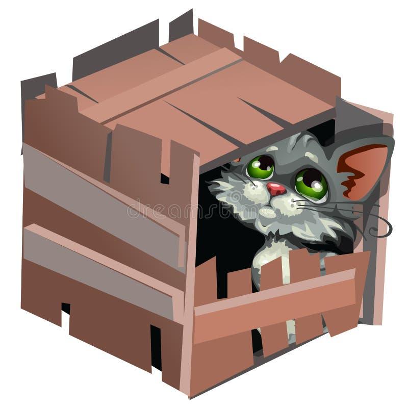Sad cartoon gray kitty in wooden box. Vector animal stock illustration