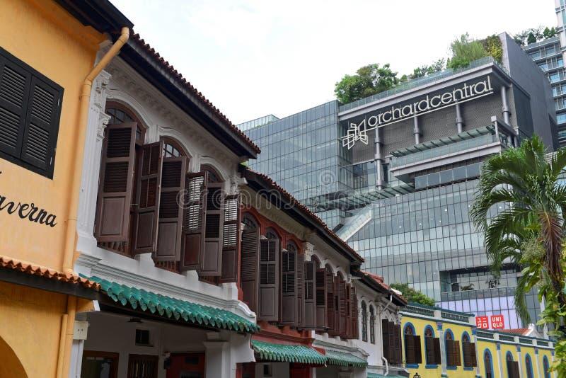 Sad droga w Singapur obraz stock
