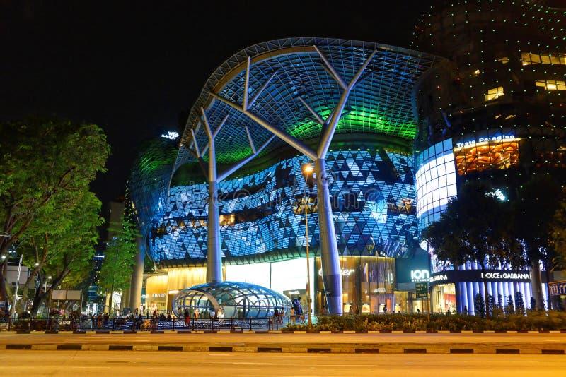 Sad droga w Singapur zdjęcia royalty free