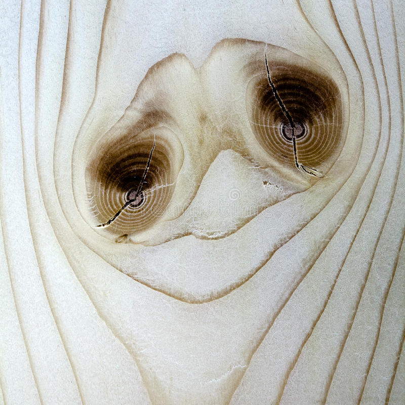 Sad emoticon. Emoticon with sad expression naturally growing from cut of wooden plank royalty free stock photography