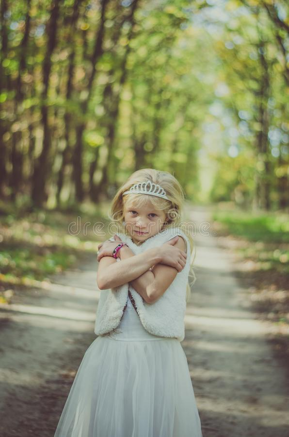 Sad freezing forest fairy royalty free stock photography