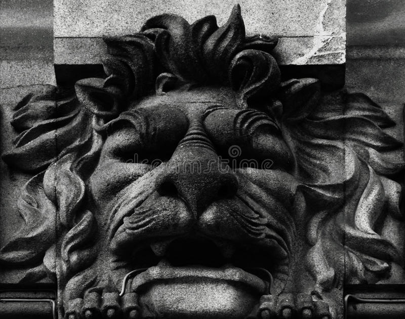 Sad lion. Shot in black and white, detail on an sculpture representing a lion placed on the facade of this historic building, set in Oporto, Porto, Portugal stock photography