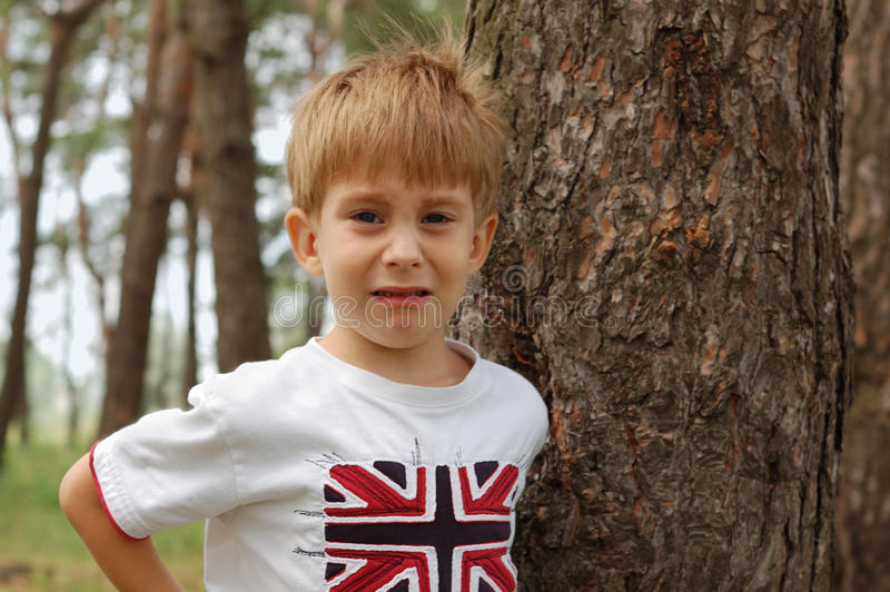 Download Sad Little Boy Going To Cry Stock Image - Image: 15071743