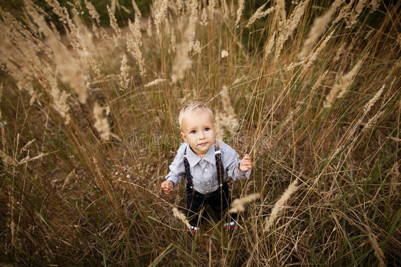 Sad Little Boy In High Grass Stock Photos