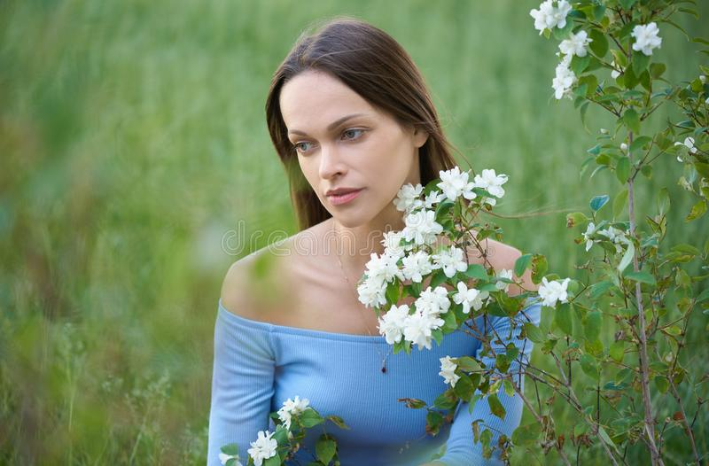 pretty girl is sitting on green grass in the park stock photography